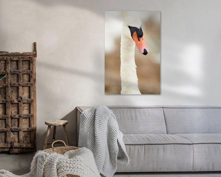 Sfeerimpressie: Portret van een Zwaan van Rene van Dam