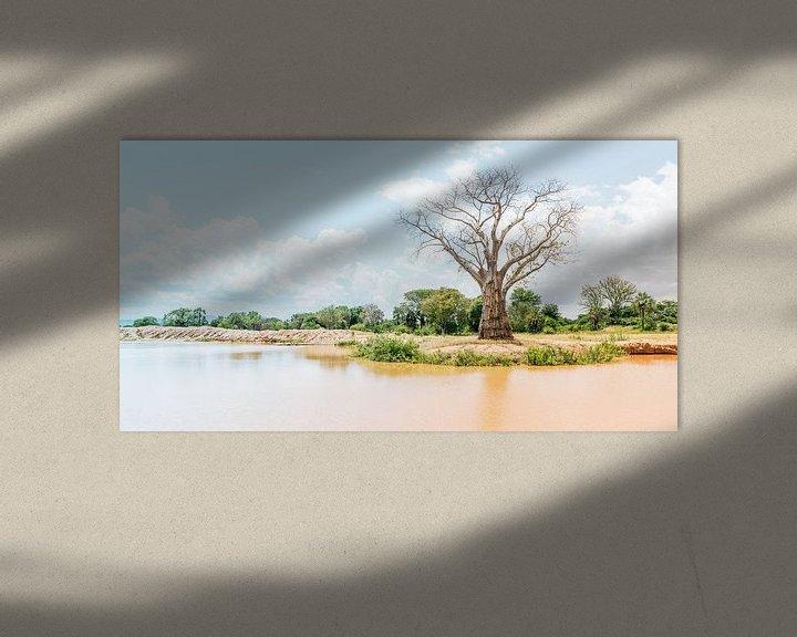 Sfeerimpressie: Waardige Baobab van Steven Groothuismink