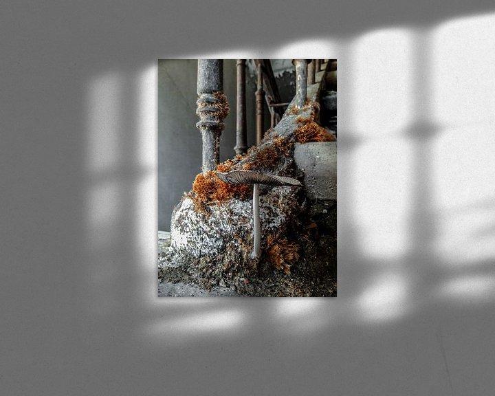 Beispiel: Die Natur überwinnt immer von PAPARAzzSSI Freelance Fotografie