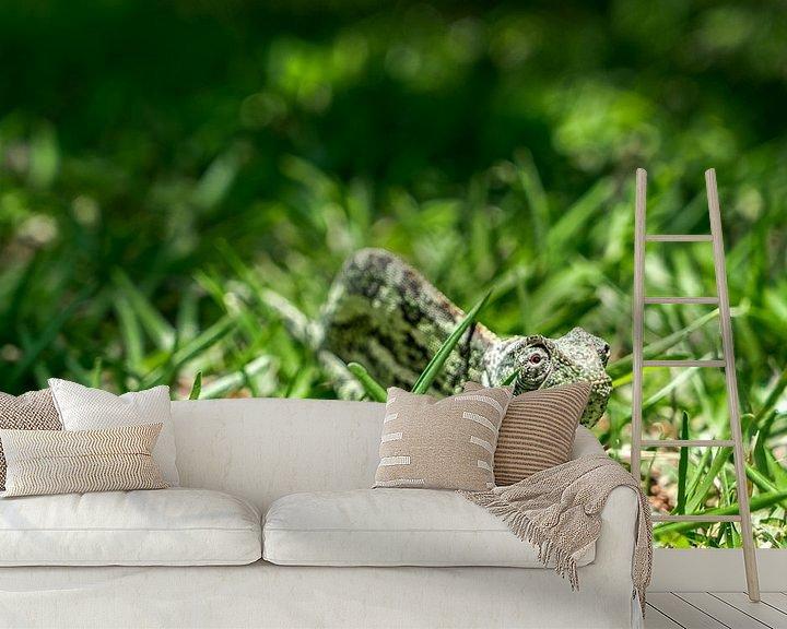 Sfeerimpressie behang: Kameleon van Steven Groothuismink