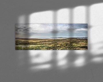 Panorama Oostvoorne