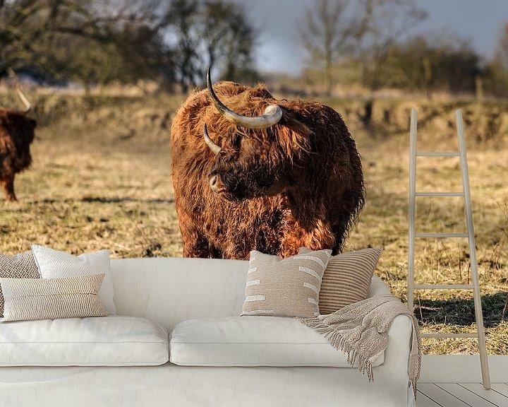 Sfeerimpressie behang: Schotse hooglander met lange horens en haren van Fotografiecor .nl