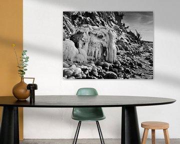 Eismammut – Steilküste Hohes Ufer, Ahrenshoop, Darß von Jörg Hausmann