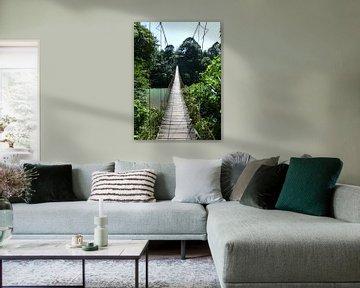 Jungle brug op Sumatra von Myrthe Visser-Wind
