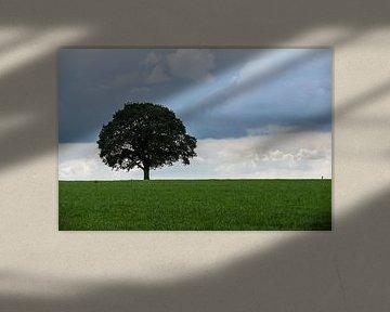 De Natuurvlag van Inge Heeringa