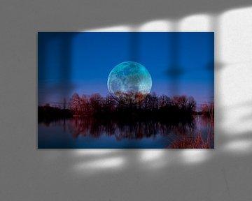 Luna arborum a tergo van Michael Nägele