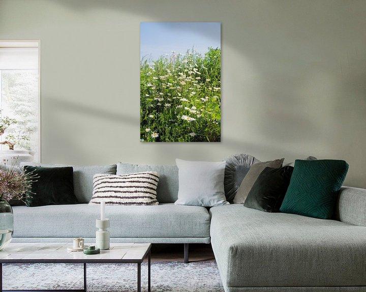 Sfeerimpressie: wilde margrieten met blauwe lucht van Compuinfoto .