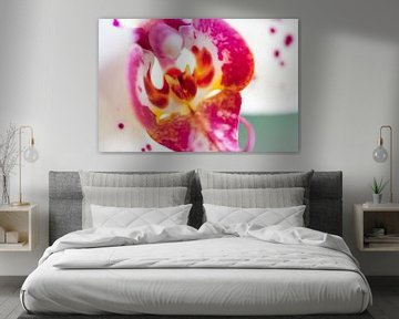 Het Orchidee Duiveltje von Vincent van den Hurk