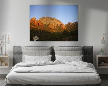 Cowboy + Mountains + USA  van Jeffrey de Ruig