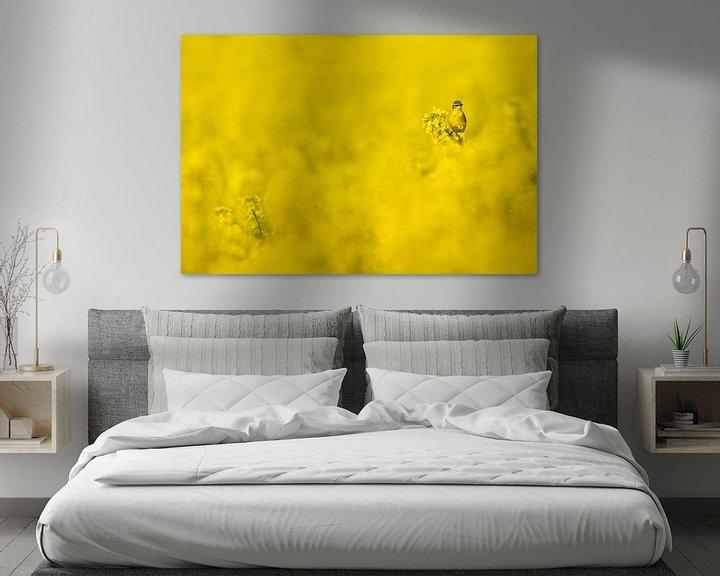 Sfeerimpressie: Gele Kwikstaart in een geel koolzaadveld van Beschermingswerk voor aan uw muur