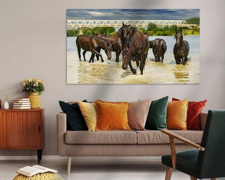 Sfeerimpressie: Paarden in het water van Above The Grid