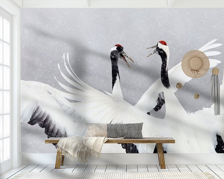 Impression: Red-crowned Cranes dancing in the snow sur AGAMI Photo Agency