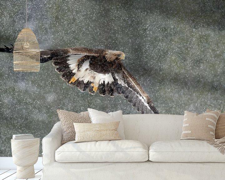 Sfeerimpressie behang: Steenarend vliegend in sneeuwstorm van AGAMI Photo Agency