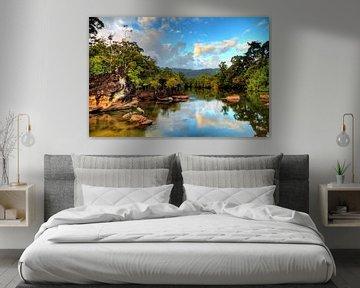 Masoala tropische rivier van Dennis van de Water