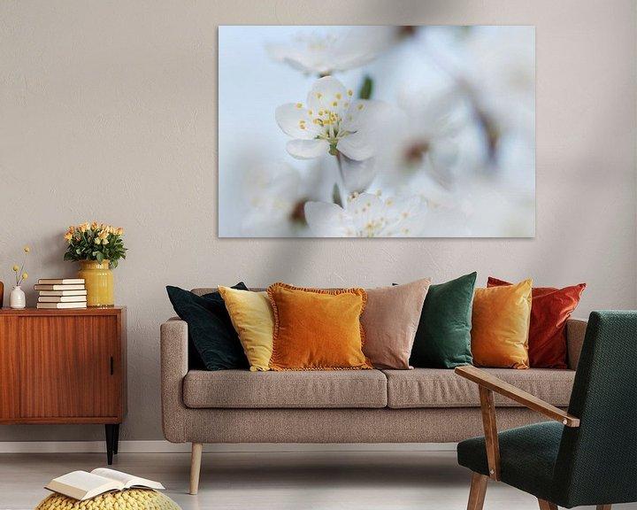 Sfeerimpressie: Witte bloesem van Martzen Fotografie