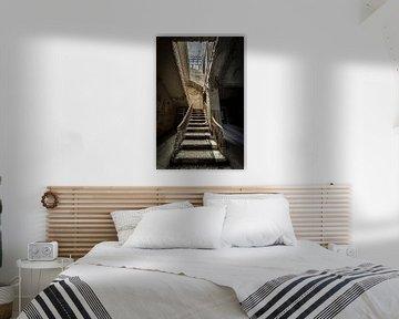 Treppenhaus im Altbau von Inge van den Brande