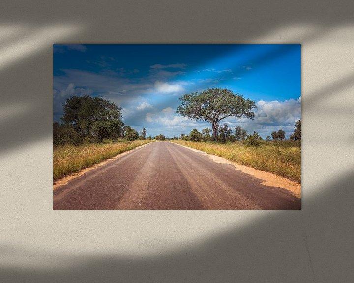 Sfeerimpressie: road in the kruger national park in south africa van Compuinfoto .