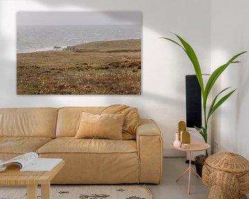 Nettes kleines Haus an der schönen Küste von Schottland. von Rebecca Gruppen