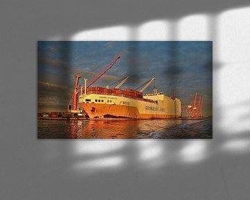 Ro/Ro schip Grande Atlantico Amsterdam Amerika haven von Ed Vroom