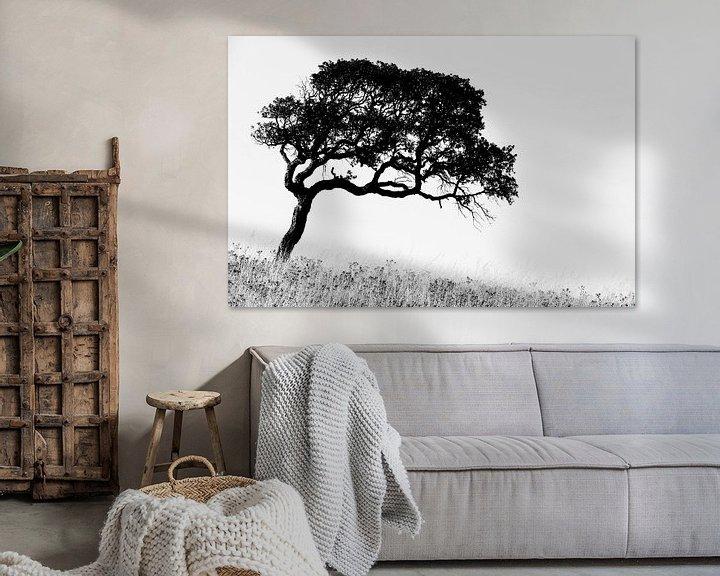 Impression: Corsican Tree sur Cor Ritmeester