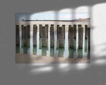 strandpalen van wilma ten Bhömer