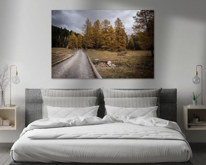 Beispiel: In den Wald - Dolomiten, Italy von Thijs van den Broek