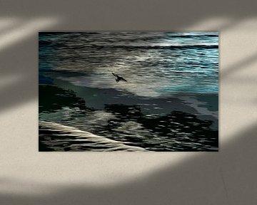 Vliegende scholekster op het wad von Hanneke Luit