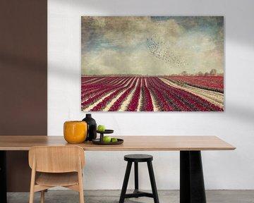 Blooming - Field with red Tulips van Dirk Wüstenhagen