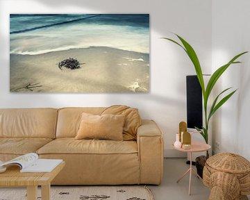 Strandszene von Tobias Luxberg