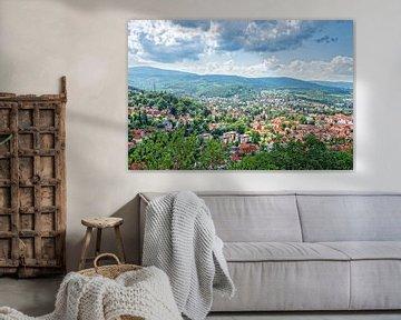Wernigerode schönes deutsches Dorf im Harz von Jan van Broekhoven
