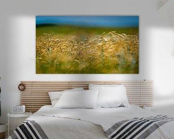 Wuivend gras von Margo Schoote