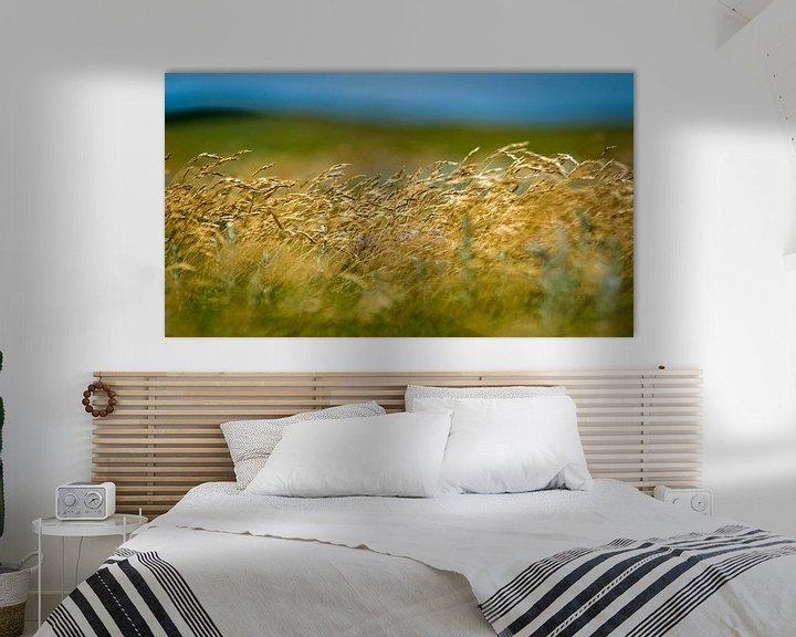 Sfeerimpressie: Wuivend gras van Margo Schoote
