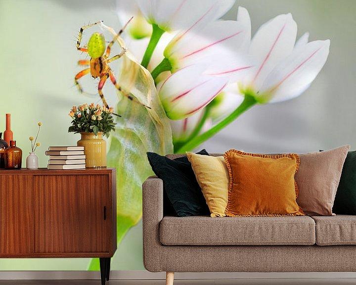 Beispiel fototapete: Komkommerspinnetje op witte bloemetjes von Dennis van de Water