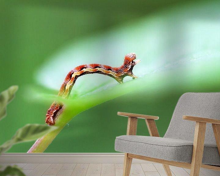 Beispiel fototapete: Rupsje op een groen blad in de lente von Dennis van de Water