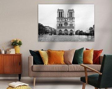 Notre-Dame Parijs - 5 van Damien Franscoise