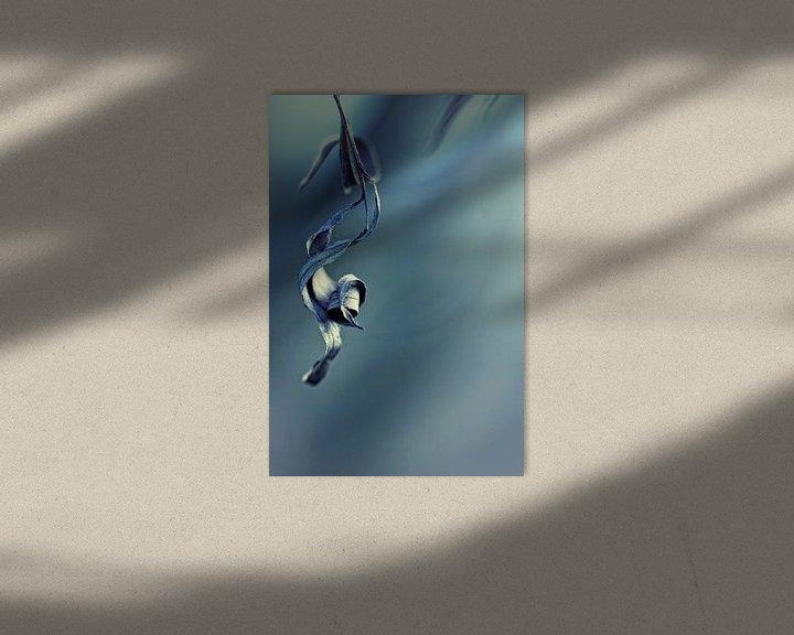 Sfeerimpressie: Last of the Mohicans... (2) (herfst, koud) van Bob Daalder