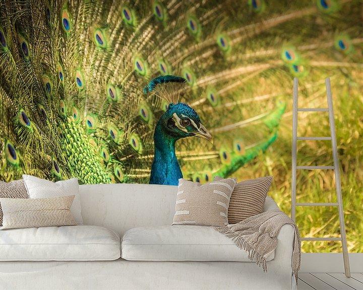 Beispiel fototapete: Toscaanse pauw III von Anneke Hooijer