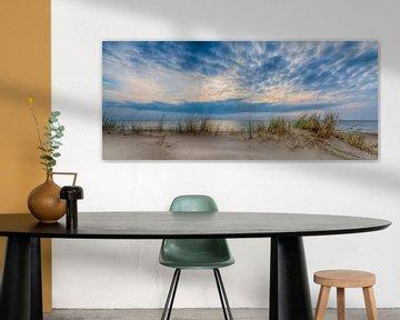 Panorama vanuit het Duin van Alex Hiemstra