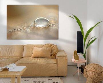 Sparkle van Carla Mesken-Dijkhoff
