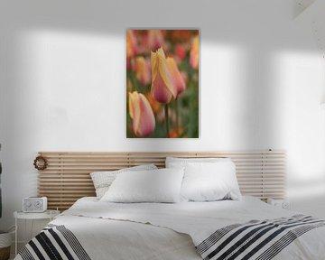 Tulpen von Marianne Twijnstra-Gerrits