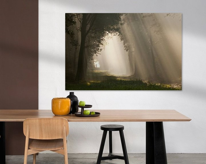 Impression: To the light... I sur Anneke Hooijer