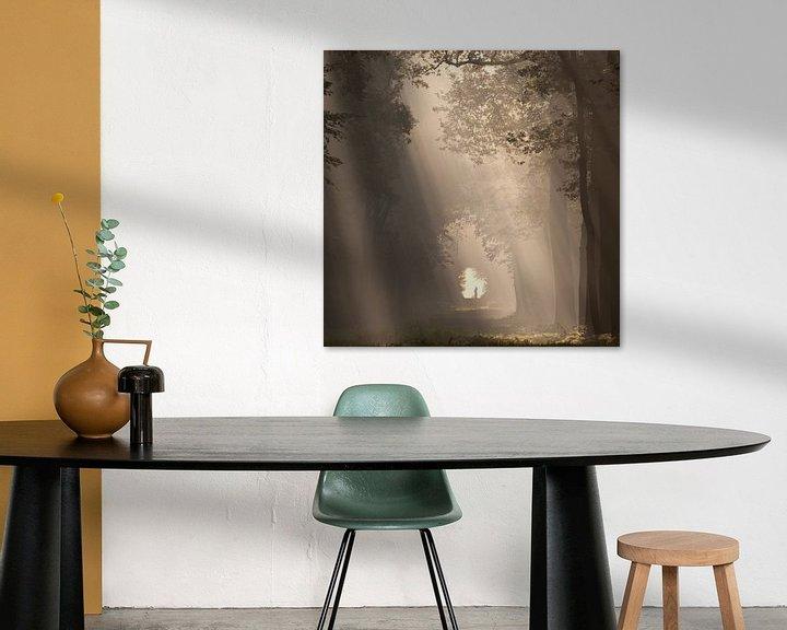 Sfeerimpressie: To the light... III van Anneke Hooijer