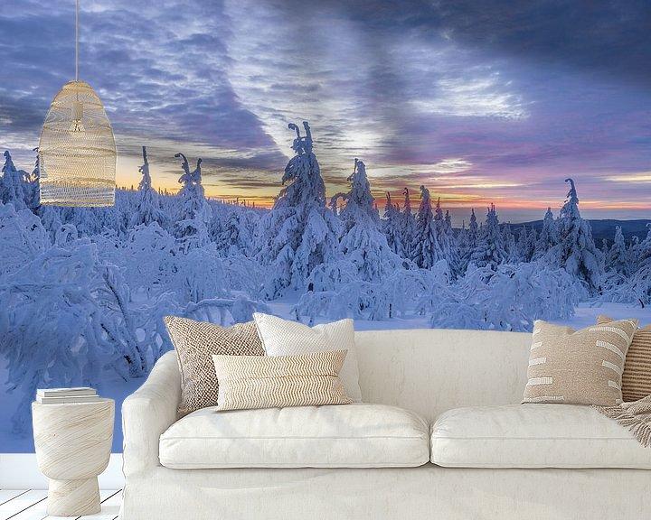 Sfeerimpressie behang: Winter im Harz van Patrice von Collani