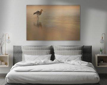 Grutto in ochtendlicht von Erik van Velden