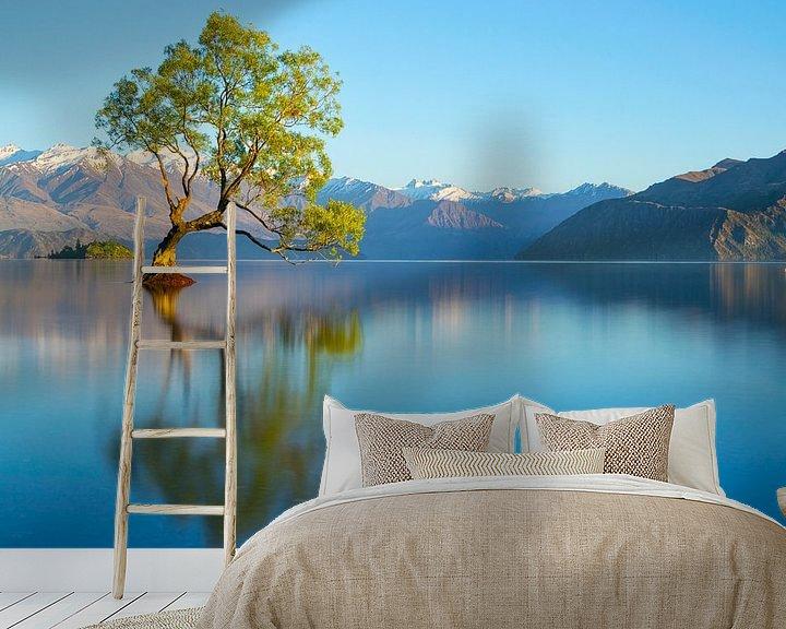 Beispiel fototapete: Morning Glory von Thom Brouwer