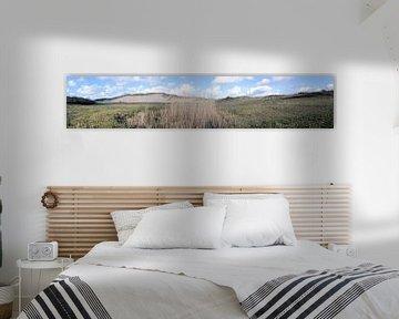 duinvallei van Erik Reijnders