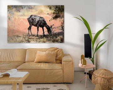 Wildlife van Ray Lagrand