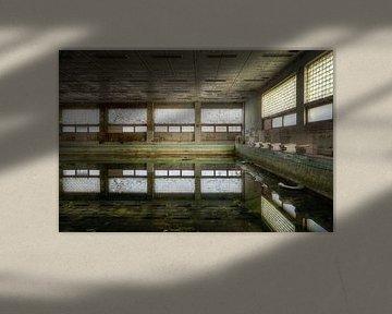 Verlassenes Schwimmbad. von Roman Robroek