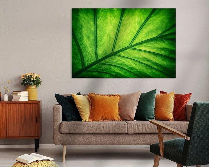 Sfeerimpressie: Blad - Groen van Jacqueline Lemmens