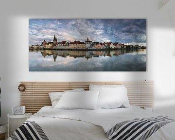 Regensburg Panorama van Tilo Grellmann | Photography